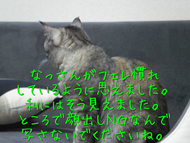 kako-uux4ciDMvNvRrBG6.jpg