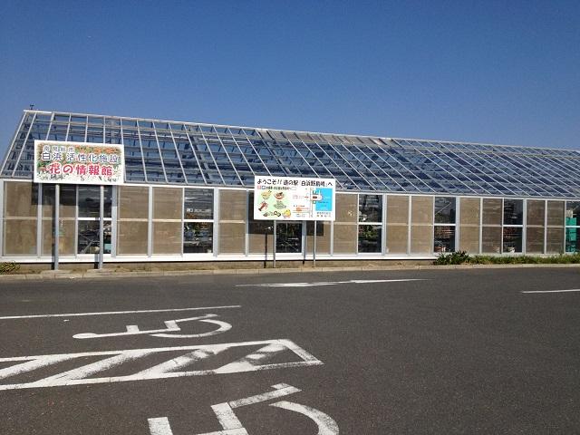 道の駅 白浜野島岬