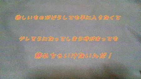 DSC_0212 (3)
