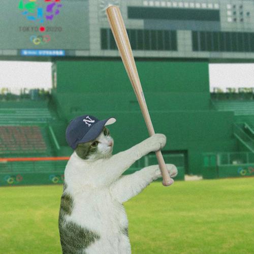 野球選手あーく氏写真