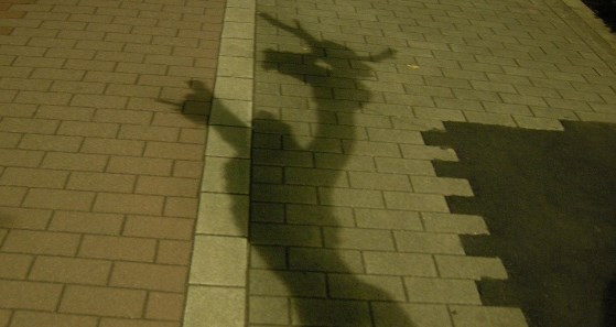 Shadow559.jpg