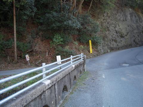 _shimoryu02.jpg