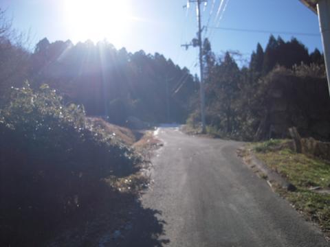 _shimoryu06.jpg