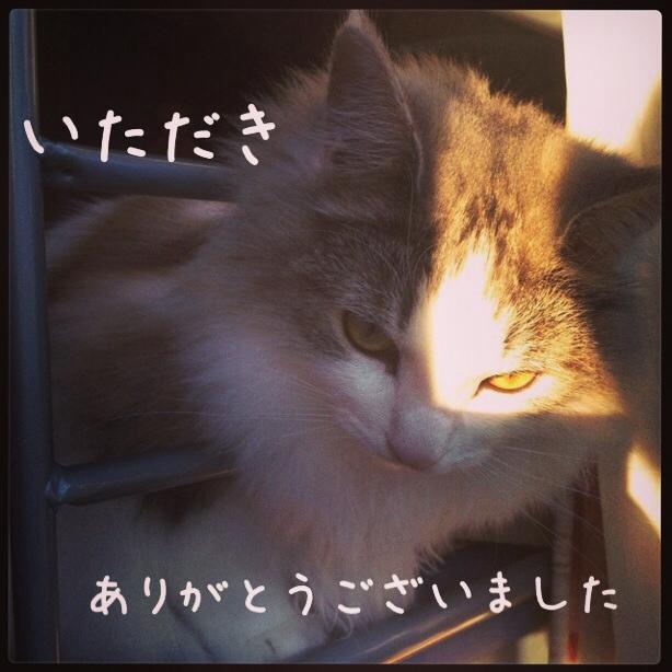 fc2blog_20131213023610b92.jpg