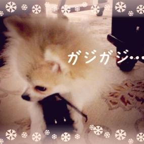 fc2blog_20131214012113a93.jpg