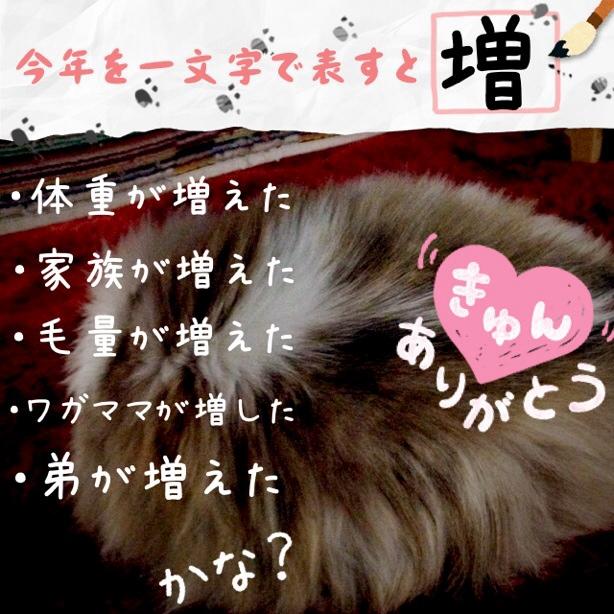 fc2blog_201312312201010bd.jpg