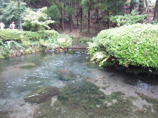 白川水源3