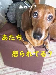 ♪ALL HAPPY DAY♪*~趣味のある暮らし~*-130312_111030_ed.jpg