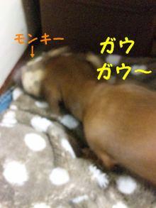 ♪ALL HAPPY DAY♪*~趣味のある暮らし~*-130410_205143_ed.jpg