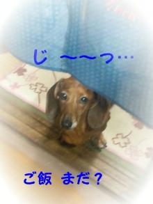♪ALL HAPPY DAY♪*~趣味のある暮らし~*-130423_191009_ed_ed.jpg
