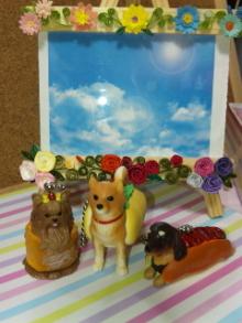 ♪ALL HAPPY DAY♪*~趣味のある暮らし~*-DVC00156.jpg