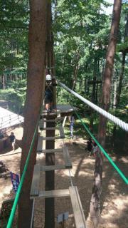 木の上圧縮