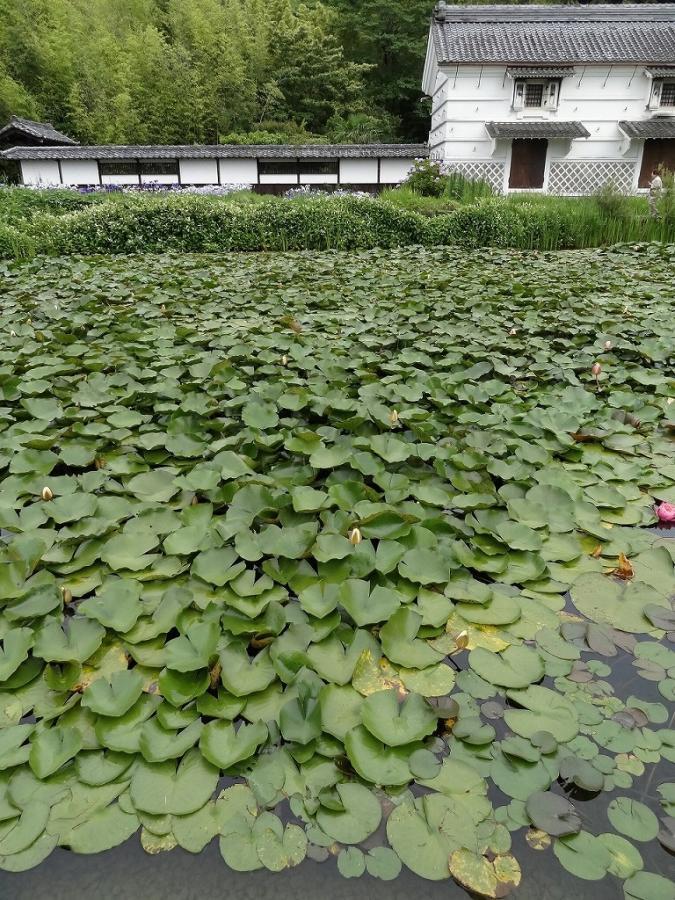 焼津黒潮温泉 028