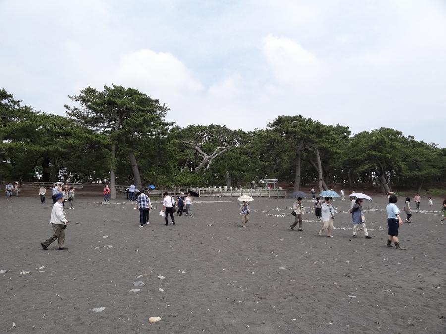 焼津黒潮温泉 105