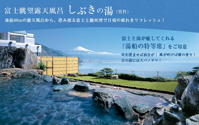 photo_shibuki-8889097.jpg
