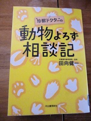 面白かった本