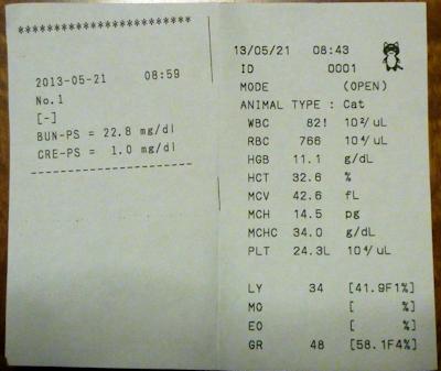 20130521しま血液検査結果