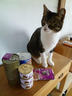 久々に猫缶買ったー