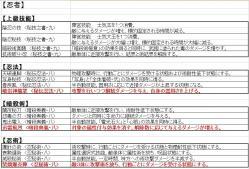 【天下夢幻の章】新技能:忍者