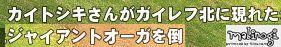 mabinogi_2013_04_21_001.jpg