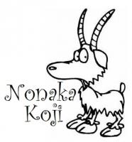 Nonaka Koji
