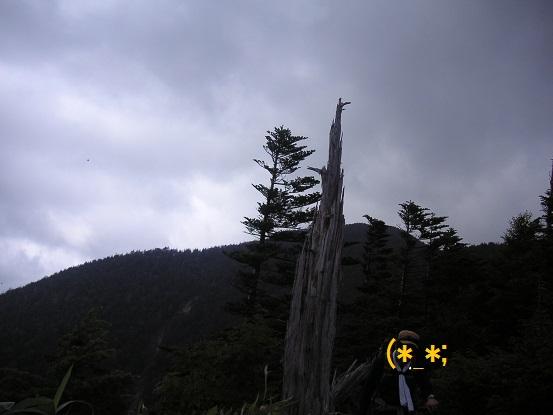 岳さんの背に恵那山
