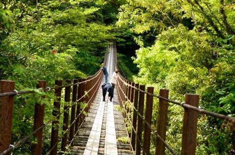 吊橋 (2)