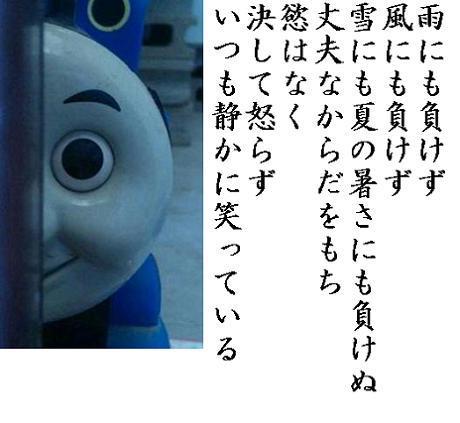 tomasu.jpg
