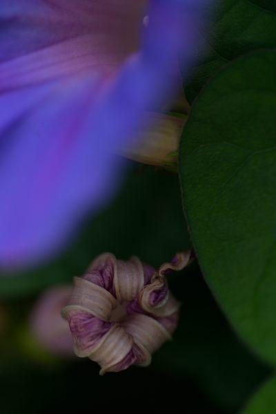 2013-07-27_0027-400.jpg