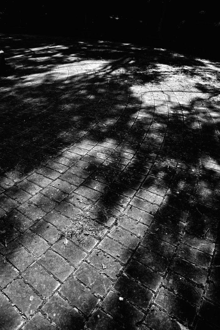 2013-10-01_0019b-400.jpg