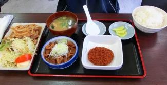 ガッツリ定食