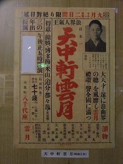 yachiyo50.jpg