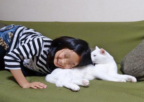 安眠を下さい!