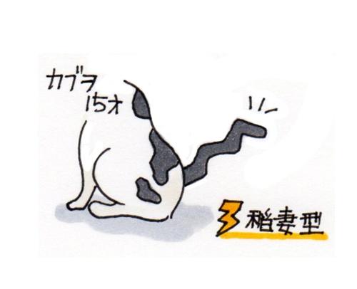 20130705-115822-カブヲ