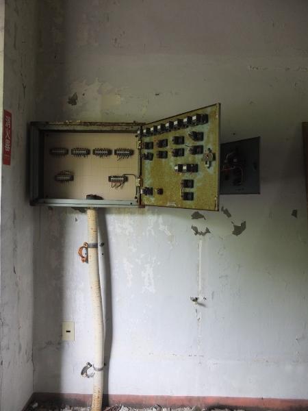 DSCF4730 (450x600)