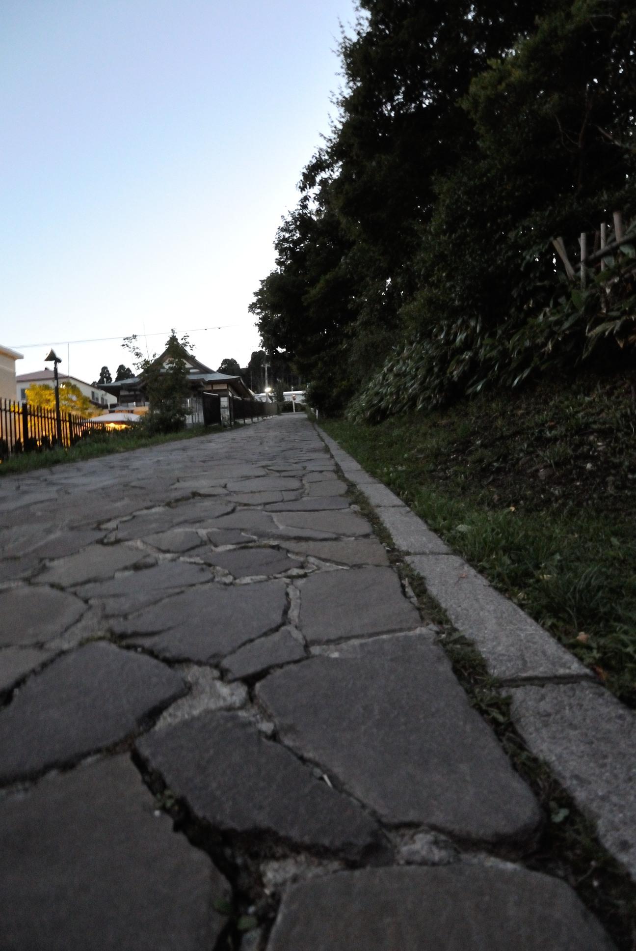 函館山付近の道