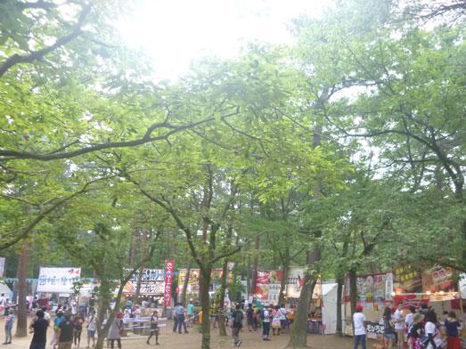 夏フェスロックインジャパン2013ひたち海浜公園011