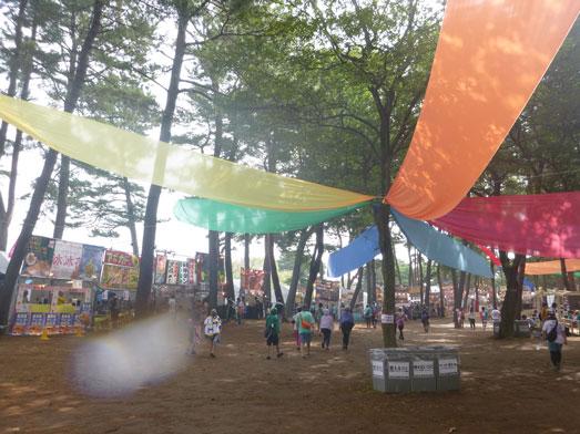 夏フェスロックインジャパン2013ひたち海浜公園013