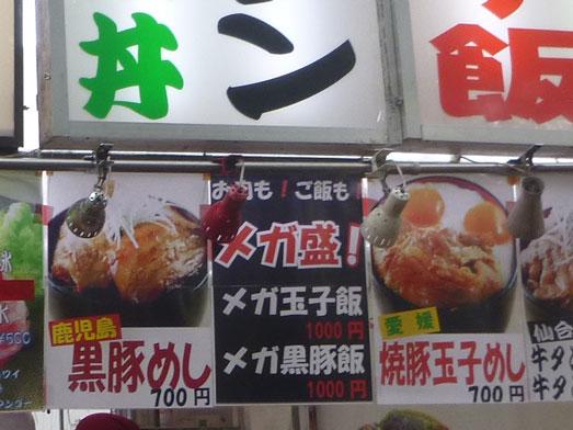 夏フェスロックインジャパン2013ひたち海浜公園015