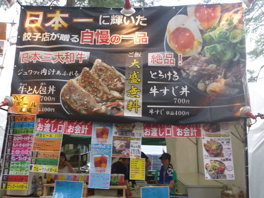 夏フェスロックインジャパン2013ひたち海浜公園016