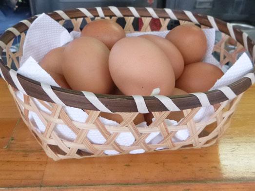 たまごや豊丸卵かけご飯おかわり自由大食い選手権017