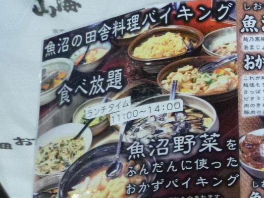越後湯沢ぽんしゅ館魚沼の畑惣菜バイキング食べ放題001