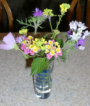 flowers04151302.jpg