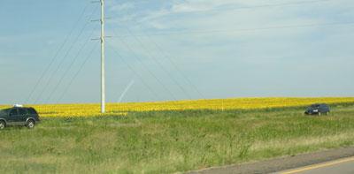 roadtomn01.jpg