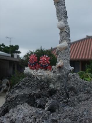 竹富島1-5