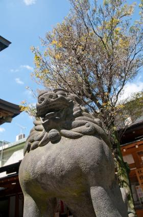 下谷神社大祭5