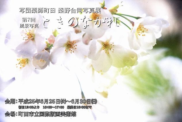 2013年町田・秦野教室写真展