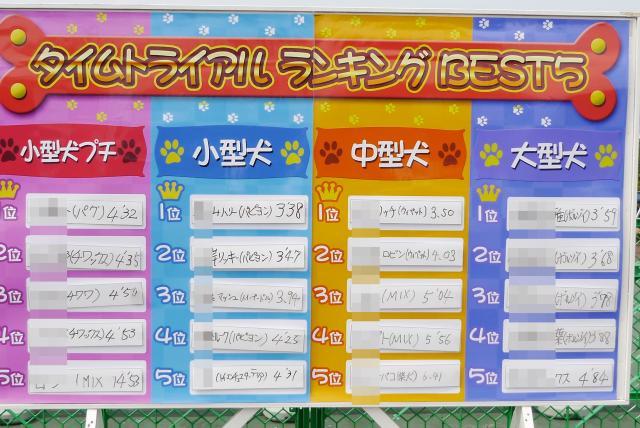 ・難シ舌Γ繝シ繝医Ν繝サ繝ェ繧カ繝ォ繝・convert_20130609172533