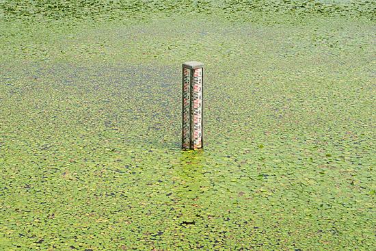 牧野ヶ池-3