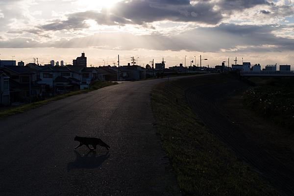 庄内川-1